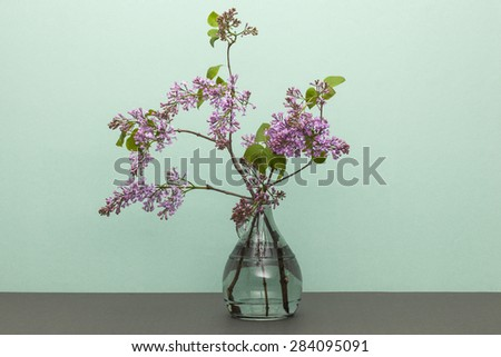 A purple(pink) flowers with glass vase and water on the grey paper bottom, emerald green background at the studio.