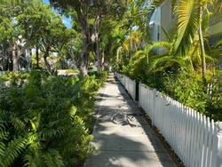 A Quiet Scene of a Pedestrian Sidewalk with Trees and Grass in a Nice Suburban Neighborhood During the Summer in Key West, Florida