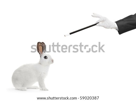 A rabbit and hand holding a magic wand isolated on white background