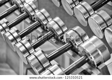A rack of silver colored dumbbells.