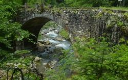 A rapid mountain stream flowing under an arched bridge made out of stone. Summer time, the forest is all green. Capatanii massif, Carpathia, Romania.
