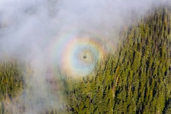 A rare optical phenomena of the round rainbow seen in the clouds with the shadow of the cabin in the middle of it with a view of Canadian forest in Whistler. Glory rainbow.