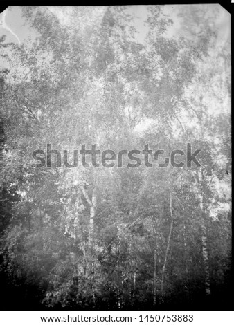 A real, black and white large-format spoiled photo with dust and scratches. Glass photographic plate with scratches, dust, dirt, out of focus image.