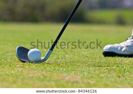 A real golfer in a golf course getting ready to strike the ball.