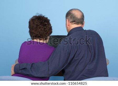A rear view of an elderly couple using a computer together, against a natural blue background