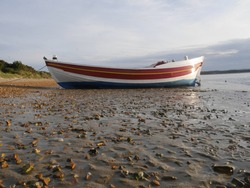A red and white wooden Coble fishing boat, pulled up on the beach, Shell Bay, Poole Harbour