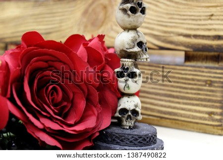 A red artificial flower lies next to a skull figurine in front of a wooden box. Mystical picture