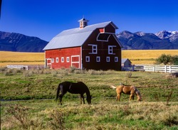 A red barn with two horses and wallowa mountains, Oregon