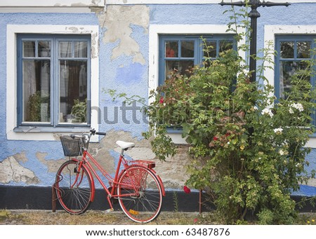 A red bike leaning against a blue house wall with a bush with red and white roses