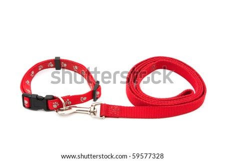 A red dog leash and collar isolated on a white background, Dog Collar and Leash