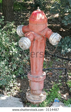 A red fire hydrant for protecting the park from fires