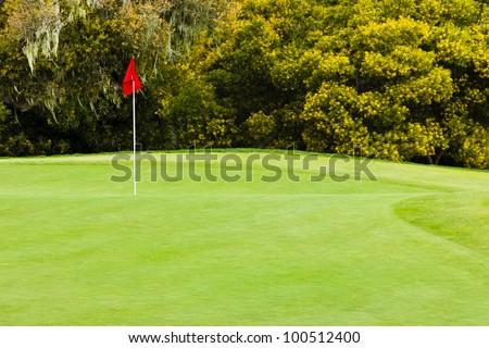 A red flag identifies the hole of a beautifully prepared golf green located on a softly rolling smooth grass surface. The hole, surrounded by tall bushes and trees, is on a tranquil golf course.