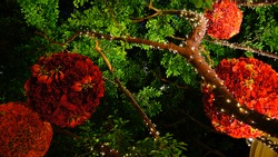 A red flower bouquet decorate for the Chinese New Year in the hotel.