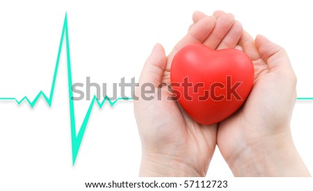 a red heart in caring female hands, a cardiogram in the background