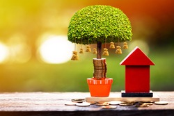 A red home model and stacking gold coins and money bag tree with growing in the public park, a saving for real estate owner in the future and richness concept.