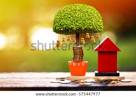 A red home model and stacking gold coins and money bag tree with growing in the public park, a saving for real estate owner in the future and richness concept. #575447977