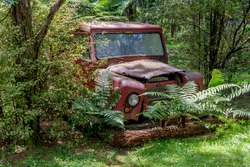 a red old landrover being allowed to rust away among a bush background . The rover is covered in dirt, grime and old leaves but the dappled sunlight turns it into a relic of beauty