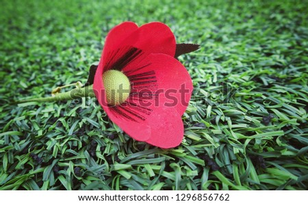 A red poppy hand made from cloth, bunch of memorial day, lying on green grass. Vintage style picture. Object concept.