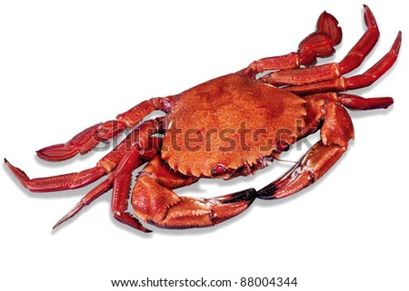 A red small crabs