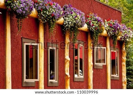 a Red Wall with flowers and windows