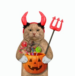 A reddish cat in red horns is holding a devil trident and a pumpkin pail with candies for Halloween. White background. Isolated.