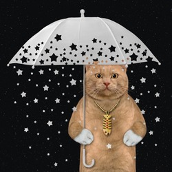 A reddish cat under a white umbrella with shooting stars. Black background.