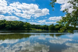 A reflection of a puffy clouds in a blue sky on the Potomac River. There is a shoreline covered with green trees and grasses.