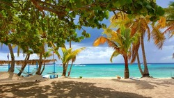 A relaxation view of beach and ocean from Catalina Island in Dominican Republic.