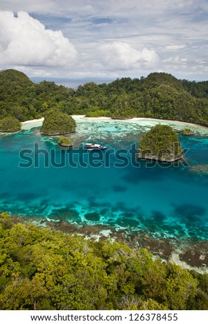 A remote bay in Raja Ampat, Indonesia harbors a beautiful fringing coral reef.  This area, within the Coral Triangle, is one of the most diverse places on the planet.