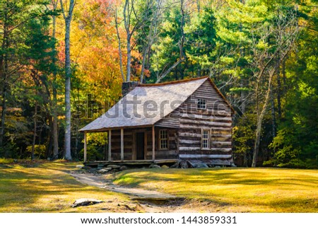 a restored log cabin surrounded by trees showing fall colors  in the Cades Cove region of the Great Smoky Mountains National Park, Tennessee