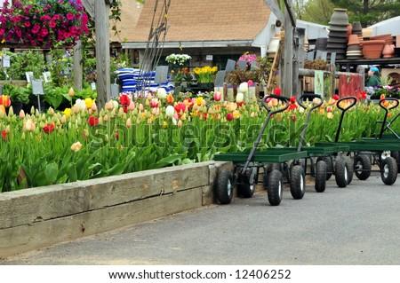 A retail garden center