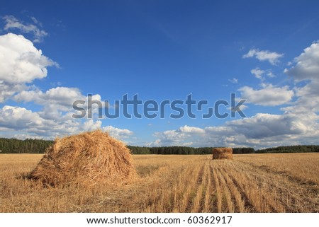 A rick of hay with the blue cloudy sky in the background