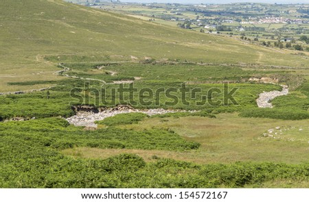 a river bed in ireland dried up after long hot summer - stock photo