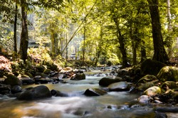 A river blur and looking peaceful rolling over rocks in nature. Gentle flowing water cascading around and over river rocks, providing the water a smooth appearance. A peaceful outdoor scene.