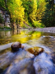 A river in a canyon. The forest during sunset. A natural landscape in the summertime.