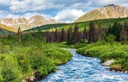 A river in a mountain valley. Mountain river valley landscape. Mountain river view. River valley in mountains