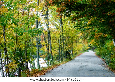 A road along the side of a pond is overhung with trees. The leaves on the trees show the bright colors of autumn.
