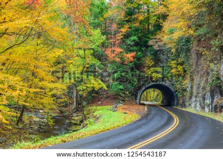 A road curving towards a Smoky Mountain Tunnel with colorful Autumn foliage. #1254543187
