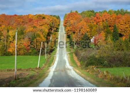 A road in the beautiful fall colors #1198160089