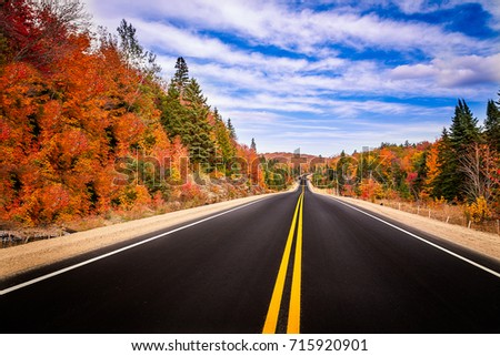A road in the fall #715920901