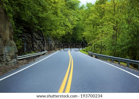 A road in the forest.
