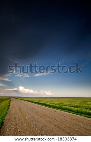 A road on a prairie landscape