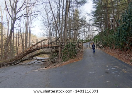 A road splits with the well trodden way blocked by a fallen tree forcing a traveler to venture into the unknown