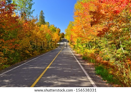 A road through the laurentian forest in the fall, Quebec, Canada