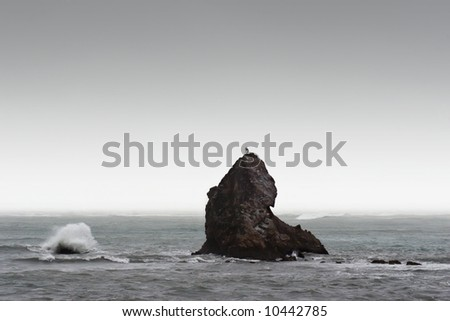 A rock is pounded by waves and wind in Nelson, New Zealand