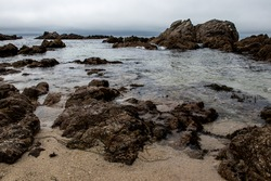 A rocky beach with tide pools