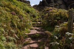A rocky pathway leading to the top of the hill