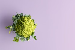 A Romanesco cauliflower over lila background