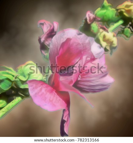 A romantic illustration of a soft pink Hollyhock graphically altered from a photograph taken in my garden. The flower leaning to one side gives a different, unique, and charming perspective.