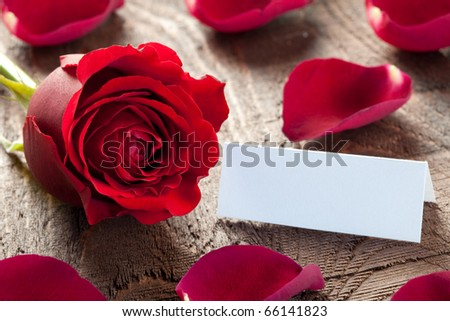 a rose with petals and tag